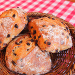 bakery hacos