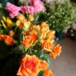 様々なお花が揃っています。