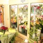 店内には様々なお花が!