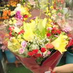花のフローラ