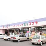 ドラッグコスモ21 溝辺店